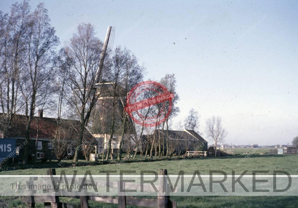 Oostkant molen en pakhuis